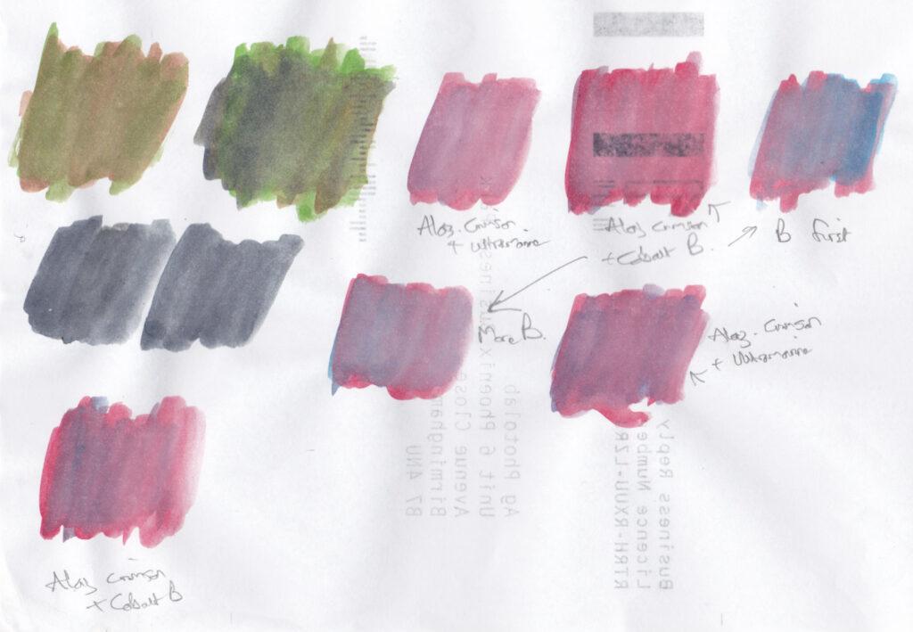 Fuschia colours